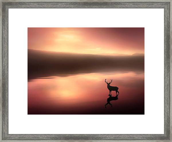 Tranquil Dawn Framed Print by Jennifer Woodward