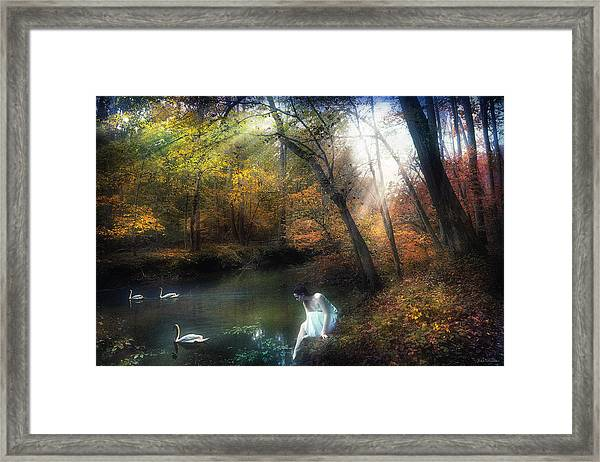Tranquil Place Framed Print