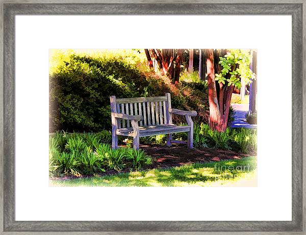 Tranquility In The Park Framed Print