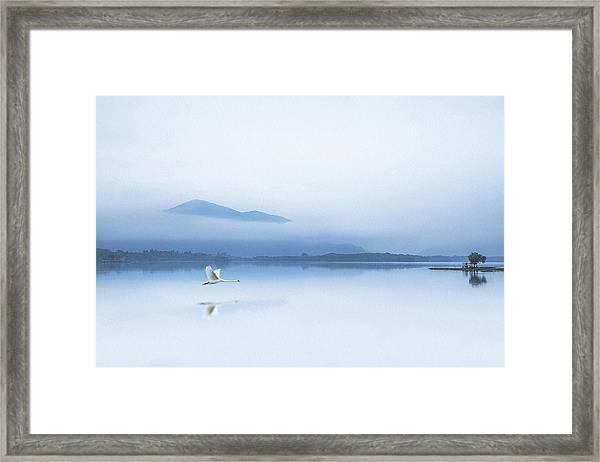 Tranquility Framed Print by Kieran O Mahony