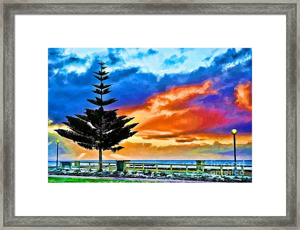 Tree And Sunset Framed Print