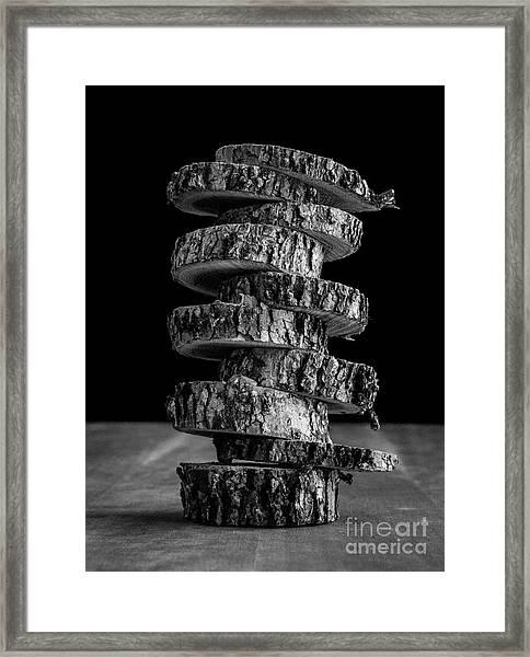 Tree Deconstructed Framed Print