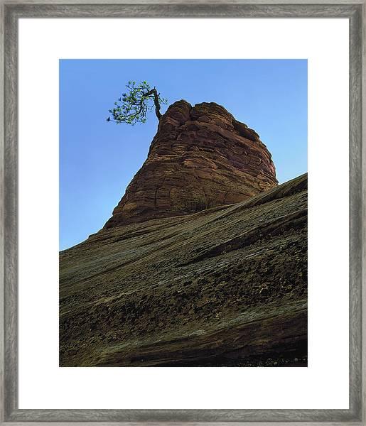 Tree Hoodoo Framed Print