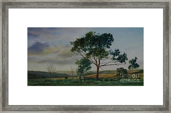 Tree Near Grove Creek Observatory Framed Print