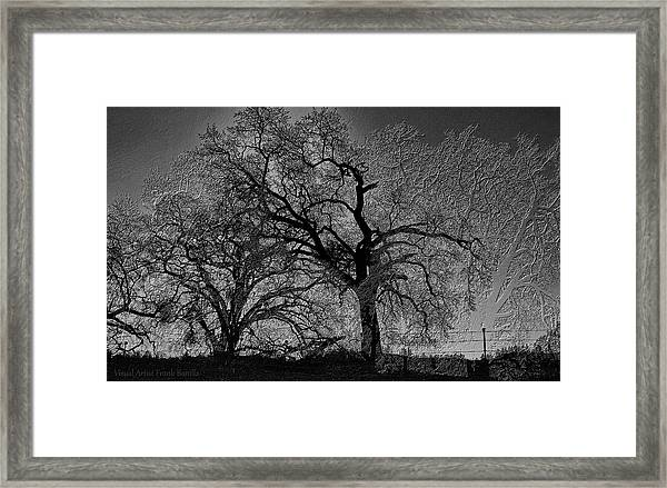 Framed Print featuring the digital art Tree Night II by Visual Artist Frank Bonilla