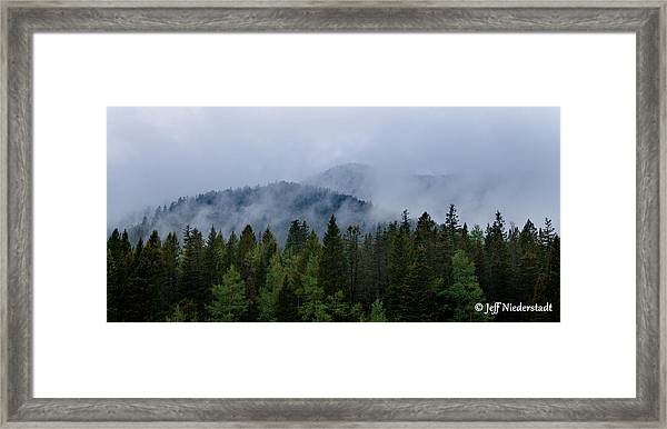 Tree Top Clouds Framed Print