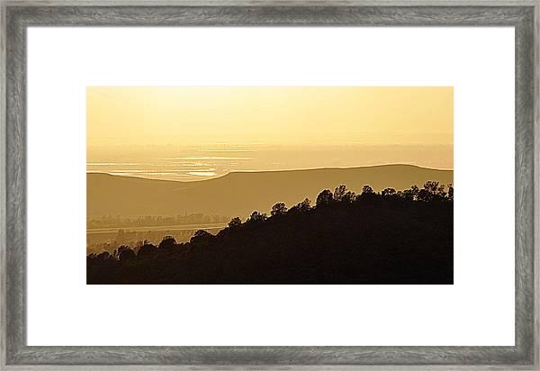 Treeline Framed Print