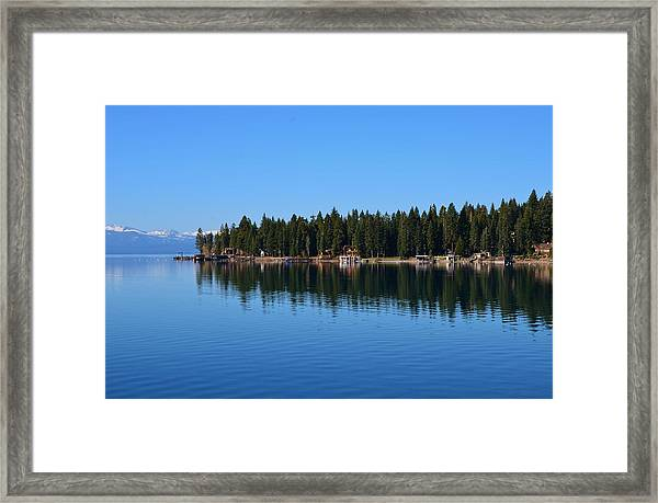 Treeline Lake Tahoe Framed Print