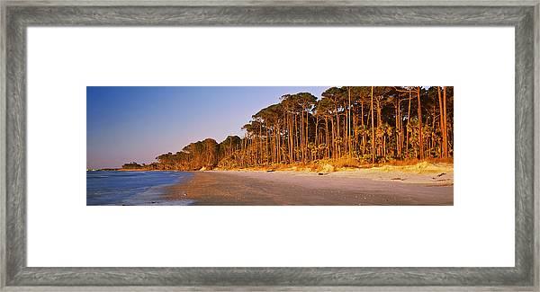 Trees Along The Shoreline, Hunting Framed Print