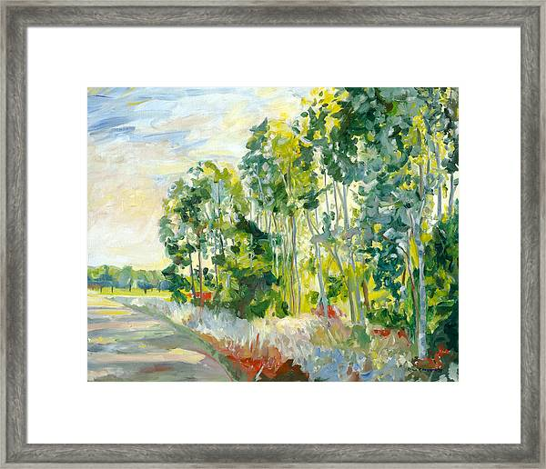 Trees By A Road Framed Print