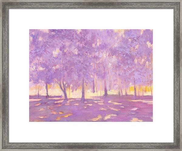 Trees6 Framed Print