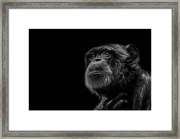 Trepidation Framed Print