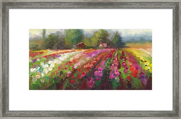 Trespassing Dahlia Field Landscape Framed Print