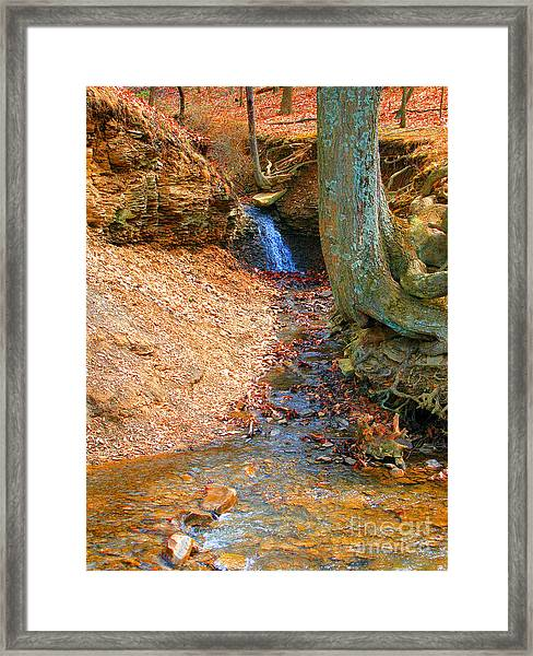 Trickling Waterfall By Shellhammer Framed Print