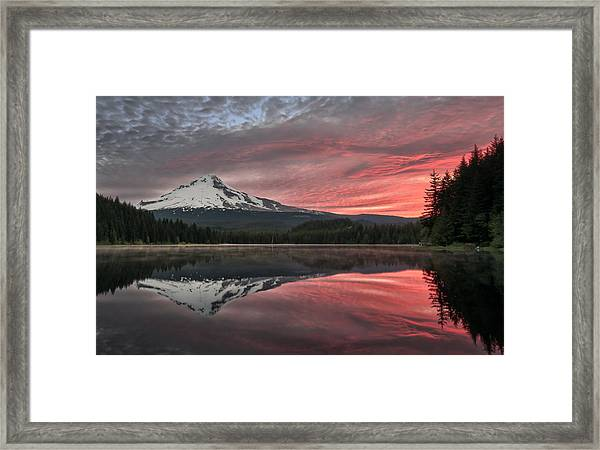 Trillium Sunrise Framed Print