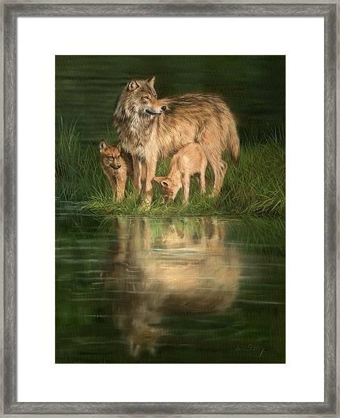 Trio Of Wolves Framed Print
