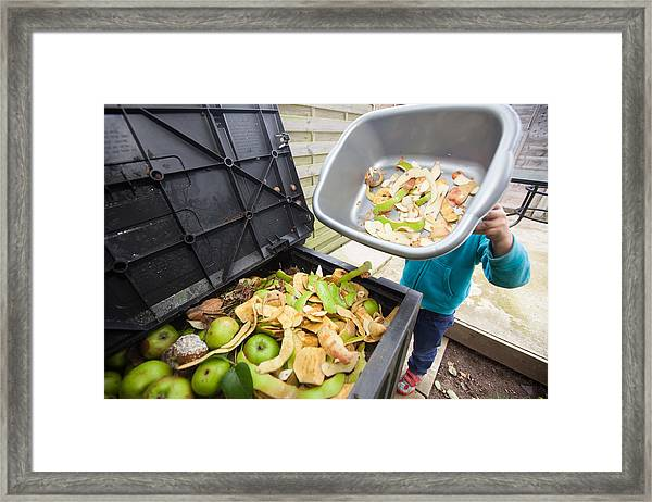 Trip To Compost Bin Framed Print by Paul Mansfield Photography