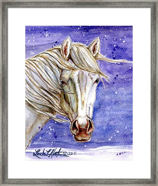 Tripod Wild Stallion Of The Sand Wash Basin Framed Print