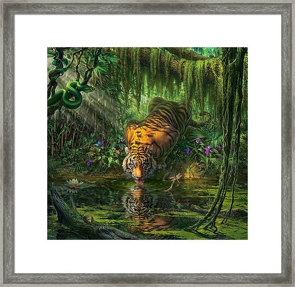 Aurora's Garden Framed Print