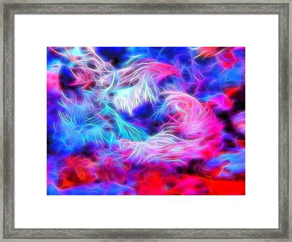 Tropical Coral Reef Framed Print