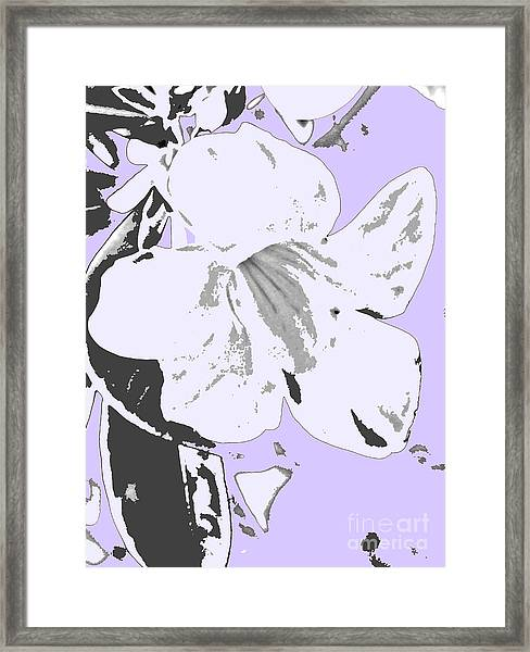 Tropical Floral Violet Black Framed Print