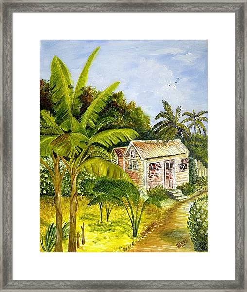 Tropical Haven Framed Print