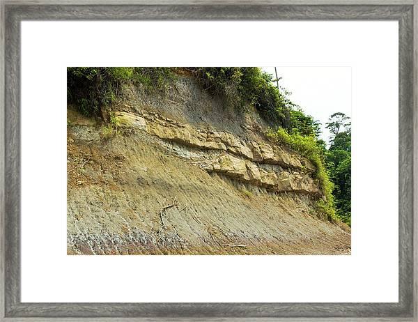 Tropical Rainforest Rock Strata Framed Print