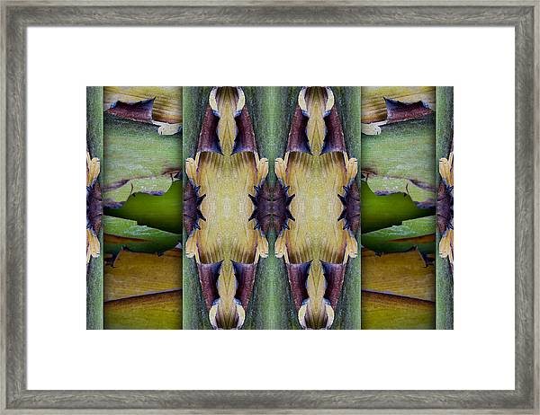 Tropical Two Framed Print