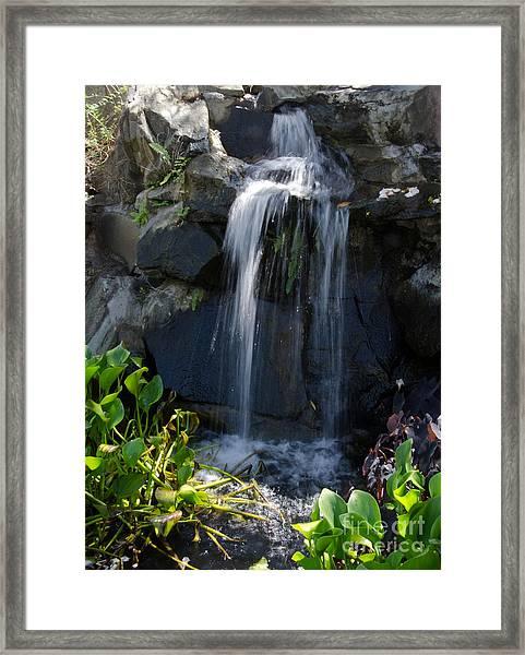 Tropical Waterfall  Framed Print