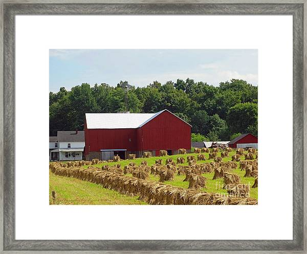 True Amish Farm Framed Print
