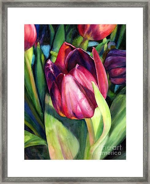 Tulip Delight Framed Print