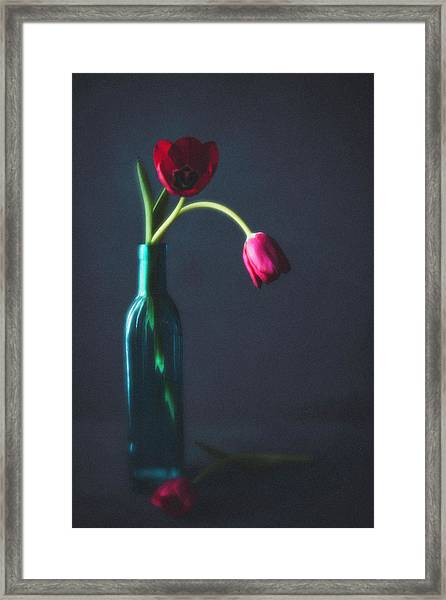 Tulip Still Life For Mothers Day Framed Print by Catlane