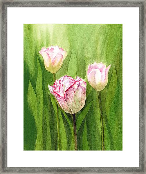 Tulips In The Fog Framed Print
