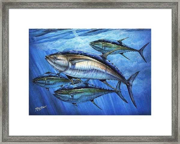 Tuna In Advanced Framed Print