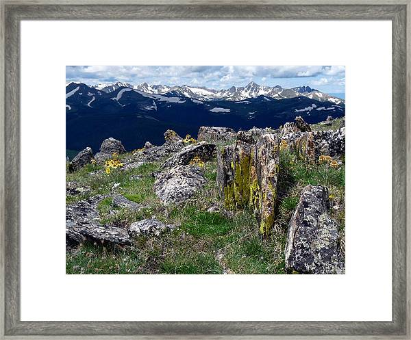 Tundra Views Framed Print