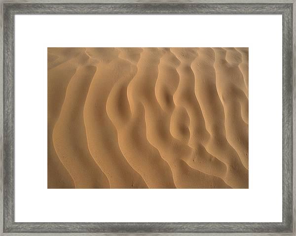 Tunisia, Sahara Desert, Ripples In Sand. Framed Print by James Hardy