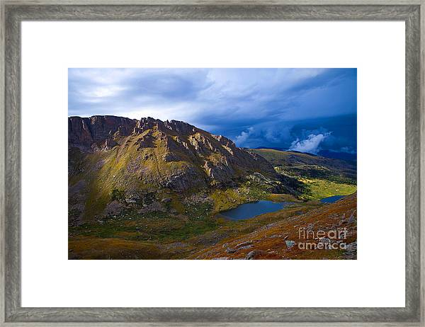 Turning To Gold Framed Print