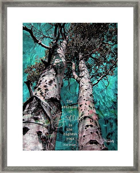 Turquois Trees  Framed Print