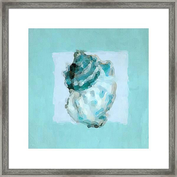 Turquoise Seashells Vi Framed Print