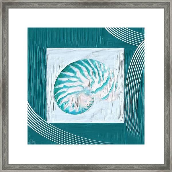 Turquoise Seashells Xxi Framed Print