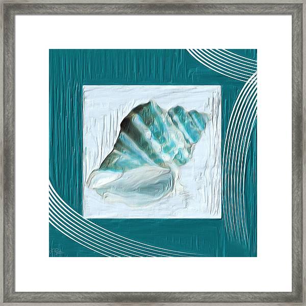 Turquoise Seashells Xxii Framed Print