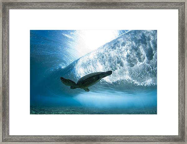 Turtle Clouds Framed Print