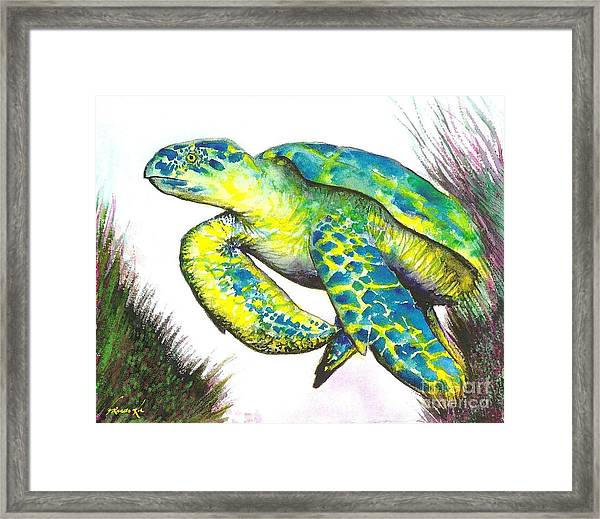 Turtle Wonder Framed Print