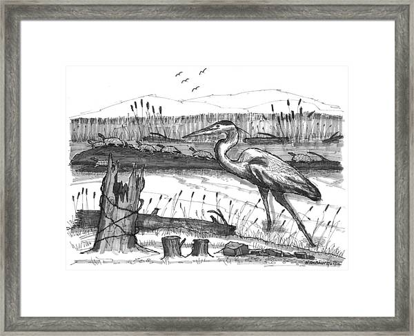 Turtles And Heron Framed Print
