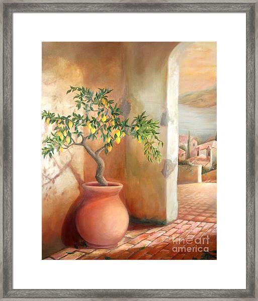 Tuscan Lemon Tree Framed Print