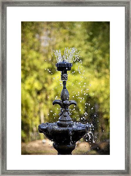 Twin Oaks Garden Fountain Framed Print