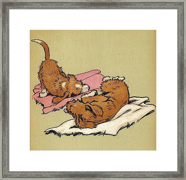 Twin Puppies, Snip And Snap, Roll Framed Print