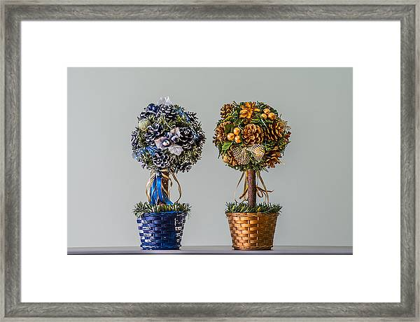 Twin Trees Framed Print