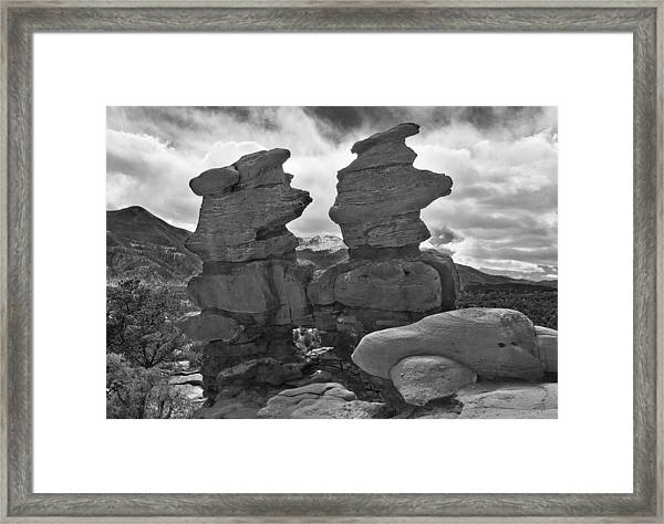 Framed Print featuring the photograph Twin Toadstools by Mae Wertz