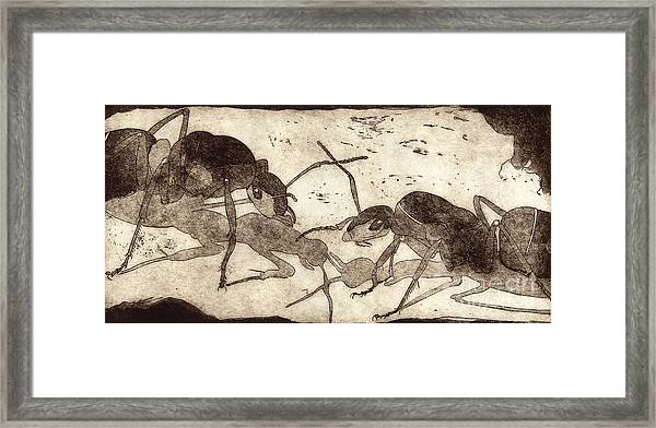 Two Ants In Communication - Etching Framed Print
